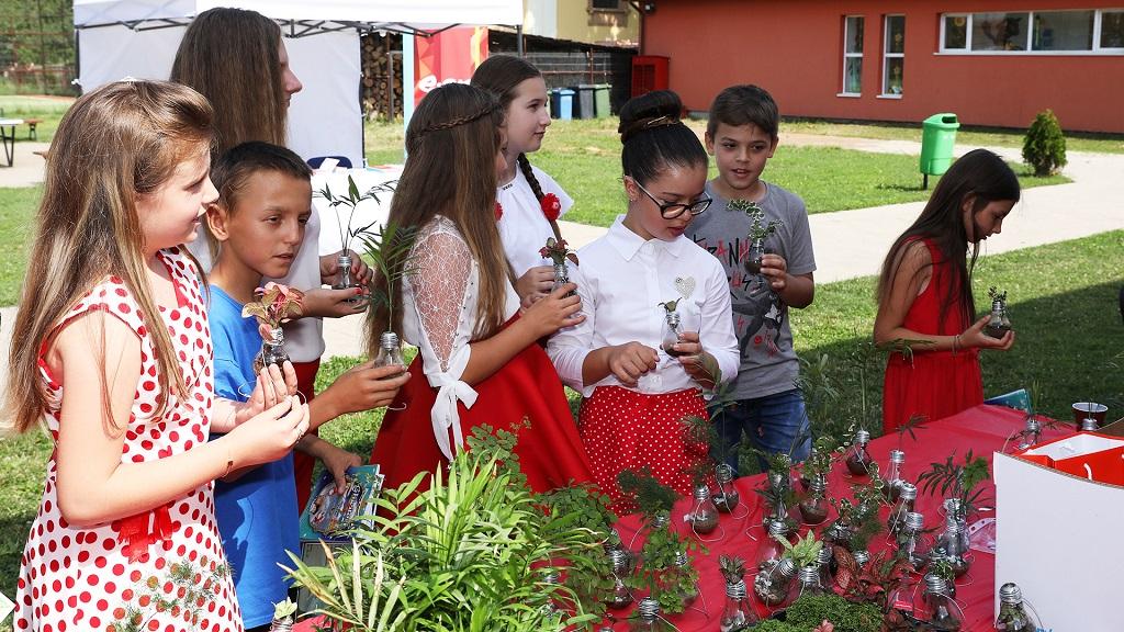 """E.On lansează primul proiect """"smart village"""" din România, în comuna arădeană Frumuşeni"""